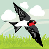 Flying swallow in country side landscape background illustration — Stock Vector