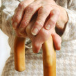 Foto Stock: Old Ladies hands with walking stick