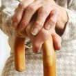 Old Ladies hands with walking stick - Stock Photo