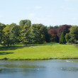 pond at blenheim palace — Stock Photo