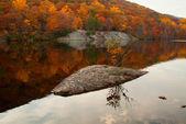 美丽的秋天颜色反映在森林湖. — 图库照片