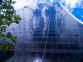 Glass skyscraper wall rising up into the sky. — Stock Photo