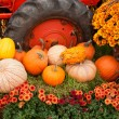 Foto Stock: Fall decorations at the farm.