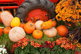 Fall decorations at the farm. — Stok fotoğraf