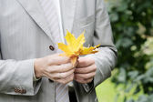 Groom holding leaf — Stock Photo