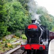 Steam train — Stock Photo #6874710