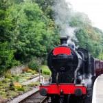 tren de vapor — Foto de Stock