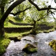 Beautiful landscape in Yorkshire Dales National Park in England - Stock Photo