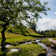 Beautiful landscape in Yorkshire Dales National Park in England — Stock Photo #6874725