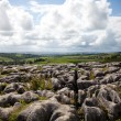 Beautiful landscape in Yorkshire Dales National Park in England — Stock Photo #6874735