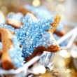Christmas cookies — Stock Photo #6986234
