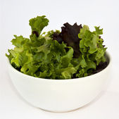 Salad in a bowl — Foto Stock
