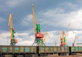 Cargo cranes and wagons in port — Stock Photo