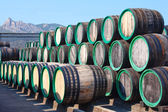 Warehouse with wine casks with madeira outdoors — Zdjęcie stockowe
