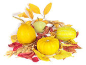 Orange pumpkins with dry leaves for halloween decoration — Stock Photo