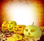 Halloween kürbis auf herbstblätter — Stockfoto