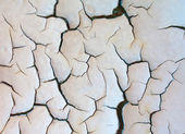Cracked paint - abstract grunge background — Foto de Stock