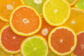 Sliced citrus fruits in different colors, background — Stock Photo