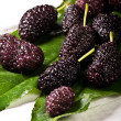 Mulberries — Stock Photo