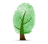 Fingerprint tree vector — Stock fotografie