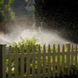 Stock Photo: Sprinklers