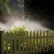 Sprinklers — Stock Photo
