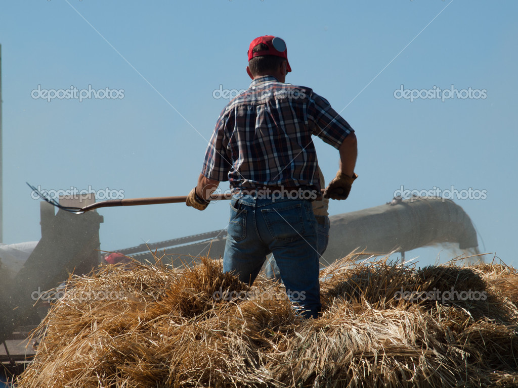 Men harvesting hay with old farm equipment. — Stock Photo #6840630