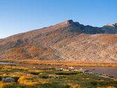 Alpine Summer in the Rockies — Stock Photo