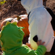 Toddlers in Halloween Costumes — 图库照片