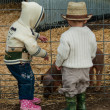 Stock Photo: Toddlers on Farm