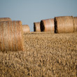 Haystack — Stock Photo #7763629