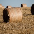Haystack — Stock Photo #7763663