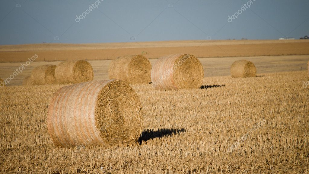 Haystack on the farm at sunset. — Stock Photo #7763583