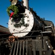 Steam Locomotive — Stock Photo #7885301