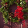 Christmas Wreath — Stock Photo #7934824