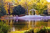 Park Ujazdowski w Warszawie. autumn. Warszawa. Poland — Stock Photo