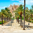 Cathedral of Majorca in Palma de Mallorca. Balearic islands. Spain — Stock Photo #7278752