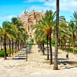 Cathedral of Majorcin Palmde Mallorca. Balearic islands. Spain — Stock Photo #7278752
