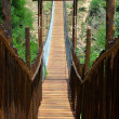 Suspension bridge — Stock Photo