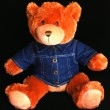 Stock Photo: Teddy bear with blue denim shirt