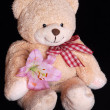 Teddy bear with lily flower — Stock Photo