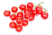 Mediterranean vine tomatoes — Stock Photo