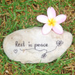 Tombstone for pet grave — Stockfoto