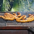 Boerewors grill — Stock Photo #7115860
