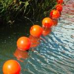 Orange buoys — Stock Photo