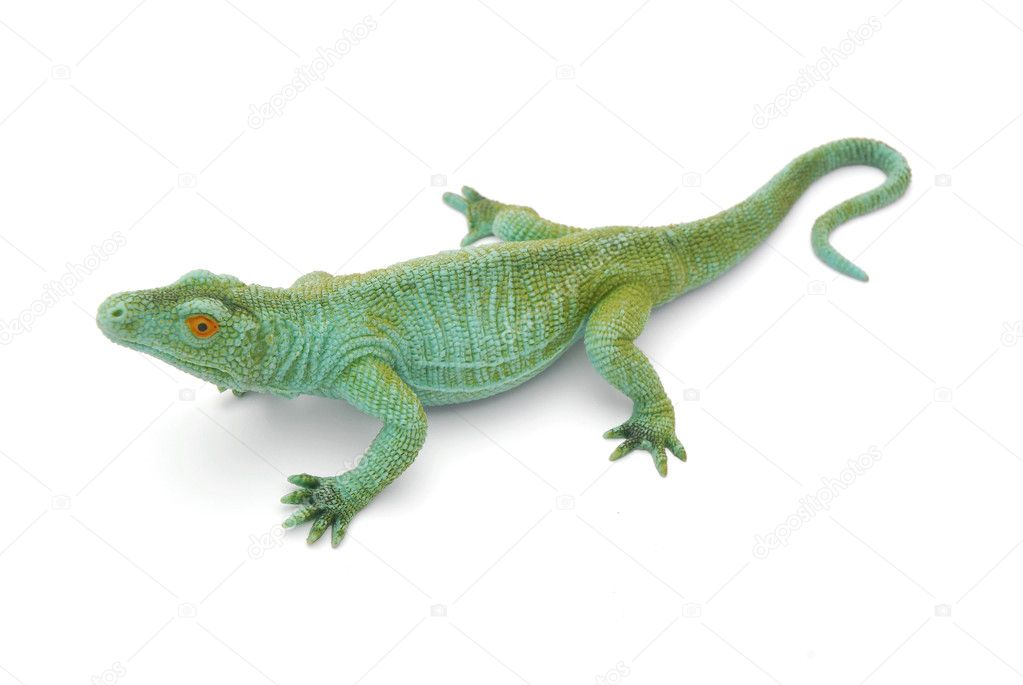A big green gum toy lizard reptile for kids to play with. Image isolated on white studio background.  Stock Photo #7174461