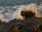 Přímořská krajina. — Stock fotografie
