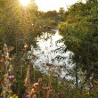 Sunset at the river — Stock Photo