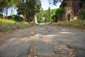 Via appia antica — Stock Photo