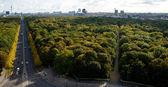 Вид с воздуха на центр Берлина — Стоковое фото
